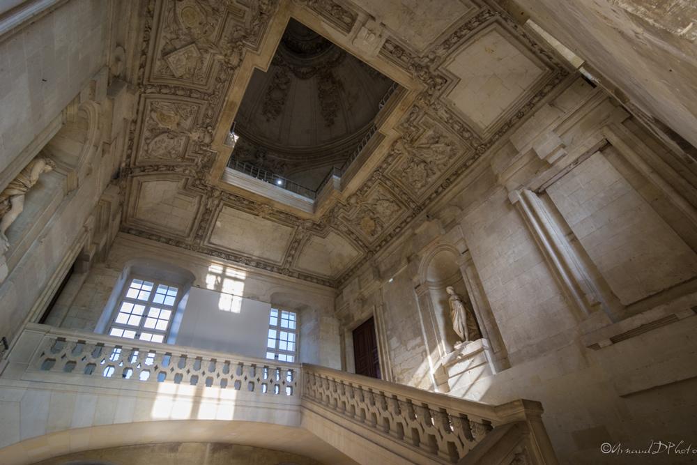 Plafond-Aile-Gaston-Orleans-Blois
