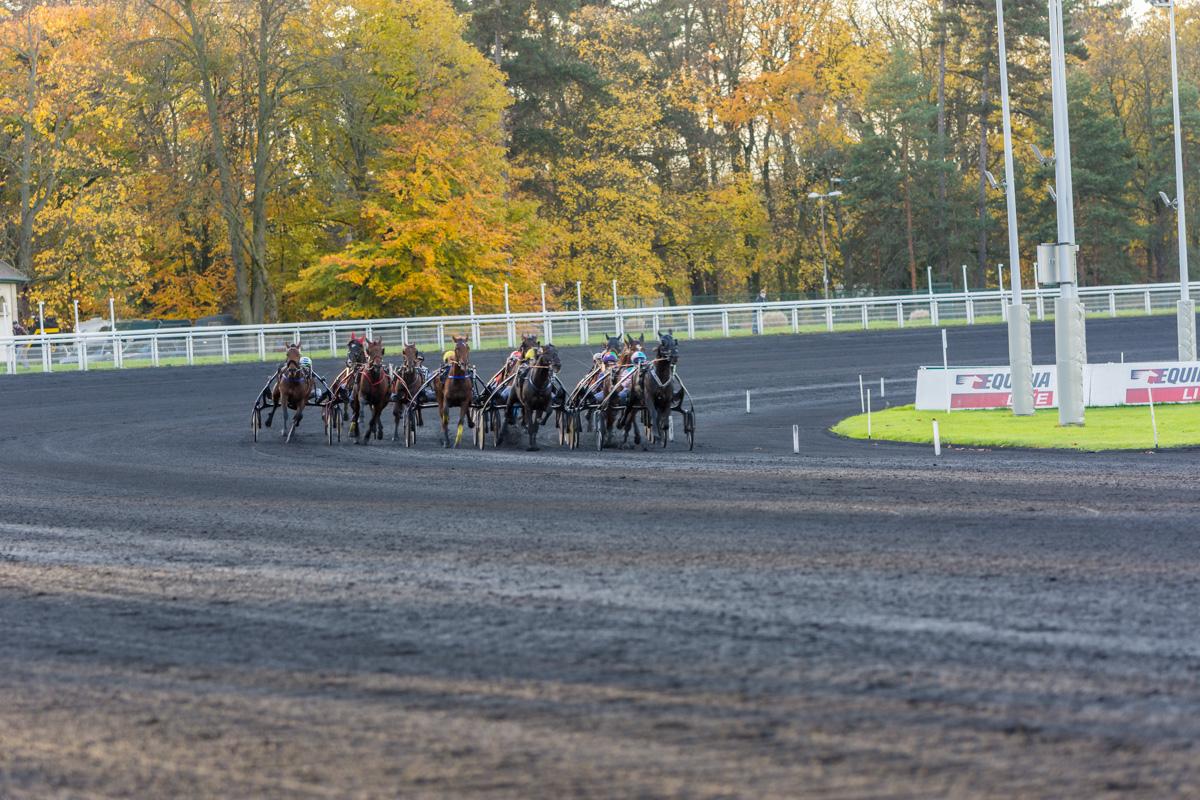 Les chevaux entrent dans la dernière ligne droite