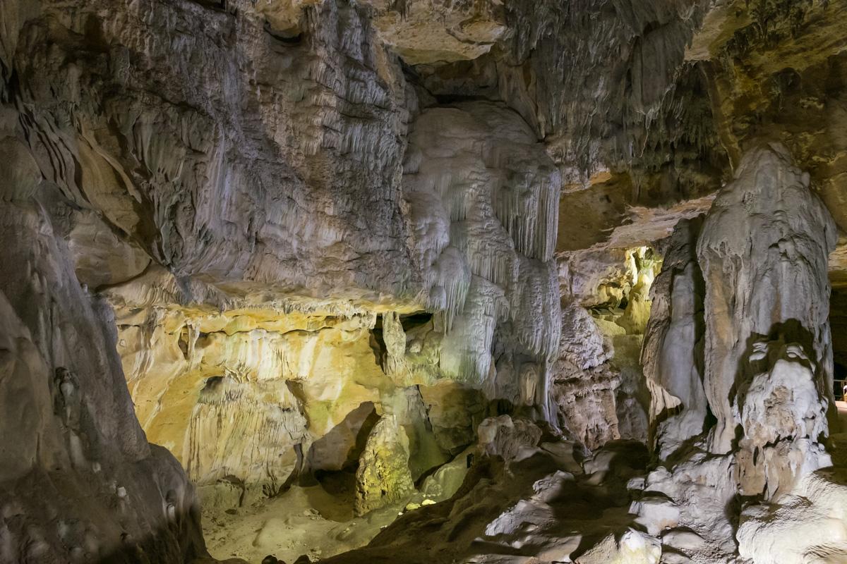 grottes de la balme-saule pleureur