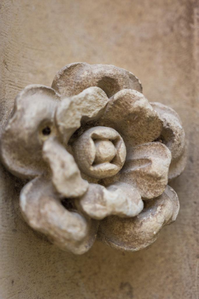 Chateau Ussé-détail fleur
