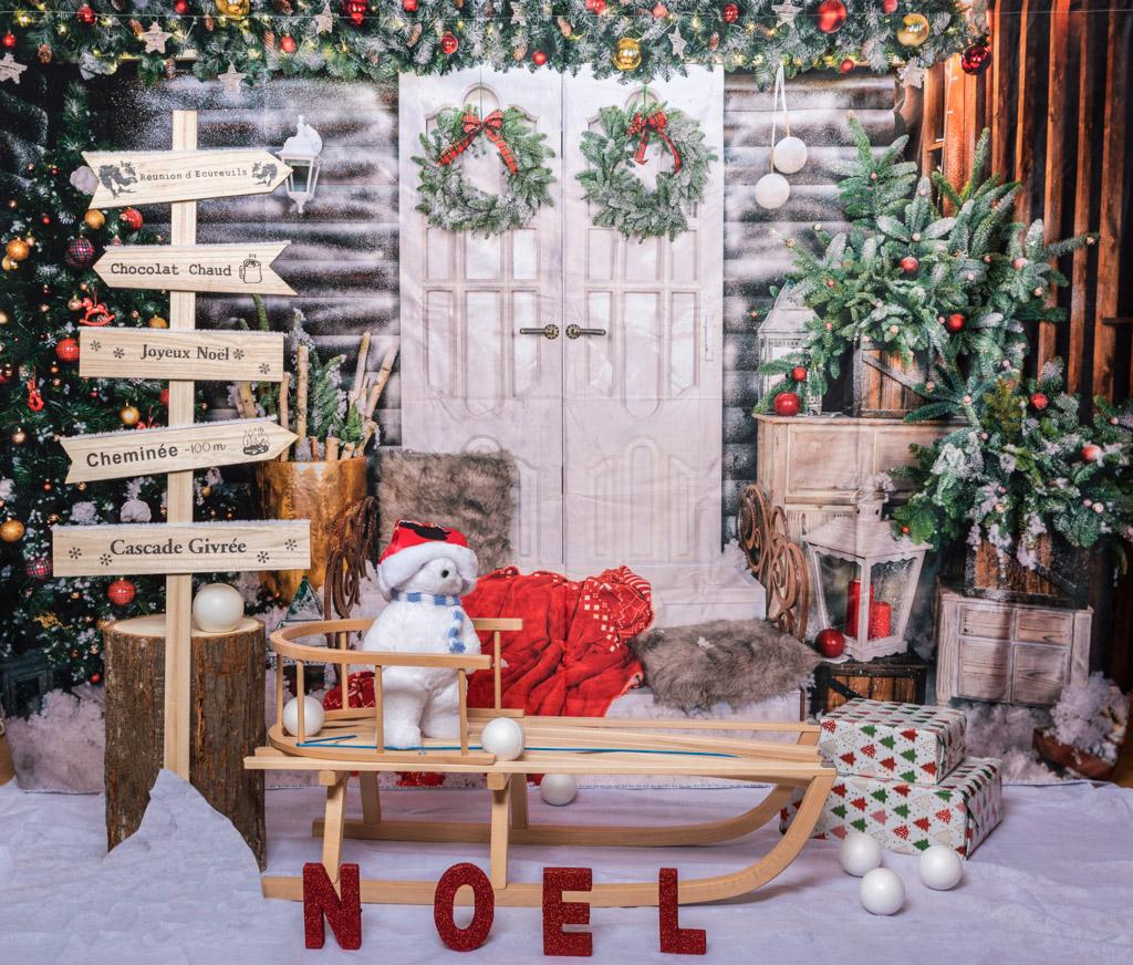 mini séance photo, noel, ours, luge, sapin,cadeau